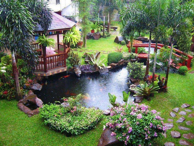 Сад в доме своими руками