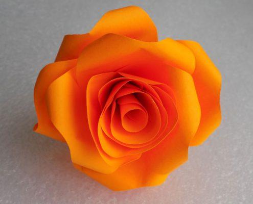 Роза изо бумаги